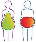 Abbildung Birnen- und Apfeltyp